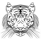 Vector stylized face of ink sketch tiger Stock Image
