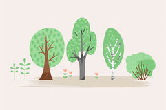 Vector stylized illustration of plant. Trees, bush, grass, flowers. Stock Photos