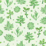 Vector succulent garden seamless pattern Royalty Free Stock Photo