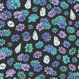 Vector succulents and plant terrariums seamless pattern on dark background. Vintage floral design. Royalty Free Stock Photography