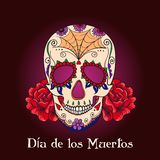 Vector Sugar Skull with ornament Royalty Free Stock Images
