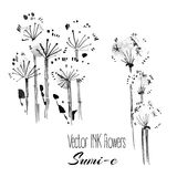 Vector sumi-e traditional elements.Dandelion and fluff. Vector hand drawn sumi-e traditional elements. Dandelion and fluff Stock Images