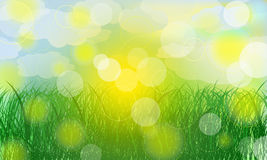 Vector summer background. Summer meadow landscape with green royalty free illustration