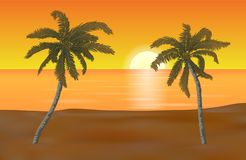 Vector summer beach landscape with yellow shaded sand and detail. Ed palm trees in orange sunset vector illustration
