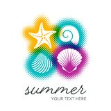 Vector summer card with seashells Royalty Free Stock Images