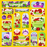 Vector summer flowers greeting tags or banners set. Summer holiday greeting tags and banners with blooming flowers design. Vector labels set of flourish viola or Royalty Free Stock Photos