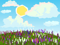 Vector summer landscape. Beautiful background. Meadow with flowers Stock Photos