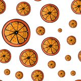 Vector summer pattern with fruits. Oranges  Seamless background Stock Image