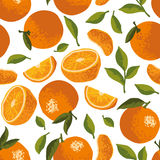 Vector summer pattern with oranges, flowers and leaves. Seamless texture design Royalty Free Stock Photos