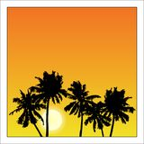 Vector summer poster framed with red and orange palm trees on wh royalty free illustration