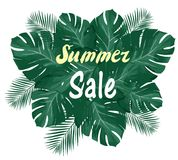 Vector Summer Sale Palm Leaves Royalty Free Stock Photo
