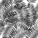 Vector summer seamless pattern with palm leaves.  Royalty Free Stock Photography