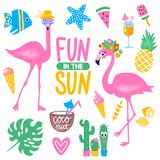 Vector summer set with pink flamingo, monstera leaf, tropical leaves. Flowers, ice cream, cocktails, fish, pineapple, coconut, watermelon. Bright stickers Royalty Free Stock Photos