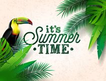 Vector Summer Time Holiday typographic illustration with toucan bird and flower on tropical plants background. Design Royalty Free Stock Image