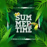 Vector Summer Time Holiday typographic illustration with toucan bird and flower on tropical plants background. Design Royalty Free Stock Images