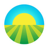 Vector sun rising under the field icon Stock Image