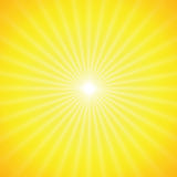 Vector sun on yellow background Stock Image