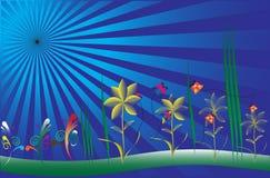 Vector sunburst flowers Stock Image