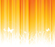 Vector sunny background Royalty Free Stock Photography