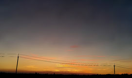 Vector sunrise or sunset. Vector illustration of sunrise or sunset Stock Photography