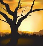 Vector sunset  landscape Royalty Free Stock Photo