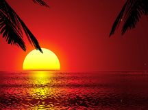 Vector sunset with removeable palms. Golden sunset with palms (turn it off, if not needed Royalty Free Stock Photography