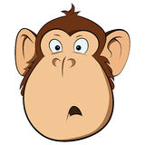 Vector of surprised monkey Royalty Free Stock Photo