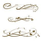 Vector swirl ornament. Vector decorative design elements & page decor Stock Photography