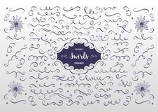 Vector swirls and flourish collection. Hand drawn design elements, flowers sketch Royalty Free Stock Photo
