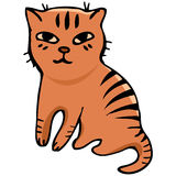 Vector. Tabby cat Stock Images