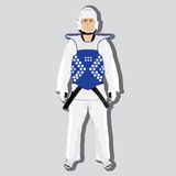Vector taekwondo fighter Royalty Free Stock Images