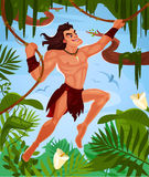 Vector Tarzan swinging on vines Stock Photography