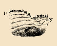 Vector tea field illustration. Sketch of southern countryside with plantation in hills, homesteads and basket. Vector tea field illustration. Sketch of southern Stock Image