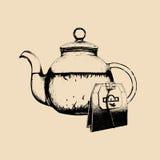 Vector tea set illustration. Hand drawn sketch of transparent glass kettle with teabag for cafe, restaurant drink menu.  Stock Images