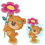 Vector teddy bear holding a pink flower in the paws. stock illustration