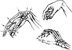 Anatomie van het menselijke lichaam vector illustratie