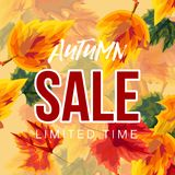 Vivid leaves in design of autumn sale banner royalty free illustration
