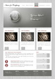 Vector  template   business website Royalty Free Stock Image