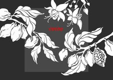 Vector template of cocoa tree branch. With leaf, flower and bean. Botanical shape design. Realistic nature banner. Organic sweet, bio chocolate, natural food royalty free illustration
