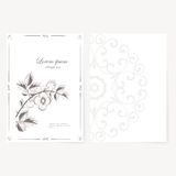 Vector template for folder, business card and Stock Photography