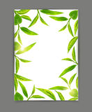 Vector template with a frame of green tea leaves, isolated on white background. Illustration for royalty free illustration
