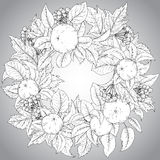 Vector template with  hand drawn apple branches and guelder rose Royalty Free Stock Images