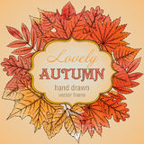 Vector template with highly detailed hand drawn leaves and place Royalty Free Stock Photo