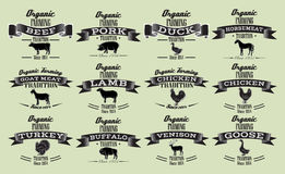 Vector template in retro style for packaging with livestock and poultry Royalty Free Stock Image