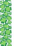 Vector template with seamless clover leaves border. St. Patrick's day pattern. Stock Photography