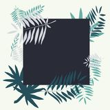 Vector template with tropical leaves. Leaves palm tree illustration. Modern graphics. Stock Image