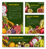 Vector templates of exotic fresh tropical fruits Royalty Free Stock Photography