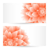 Vector templates flowers graphic designs. Birthday or invitation card Stock Image