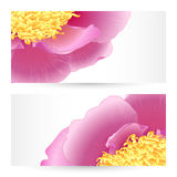 Vector templates peonies graphic designs. Vector templates flowers graphic designs. Birthday or invitation card Royalty Free Stock Images