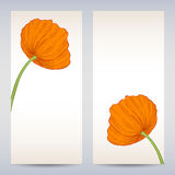 Vector templates poppies graphic designs. Easter or invitation card Stock Photos